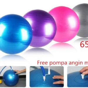 Gym Ball Bola Yoga Fitnes 65 cm